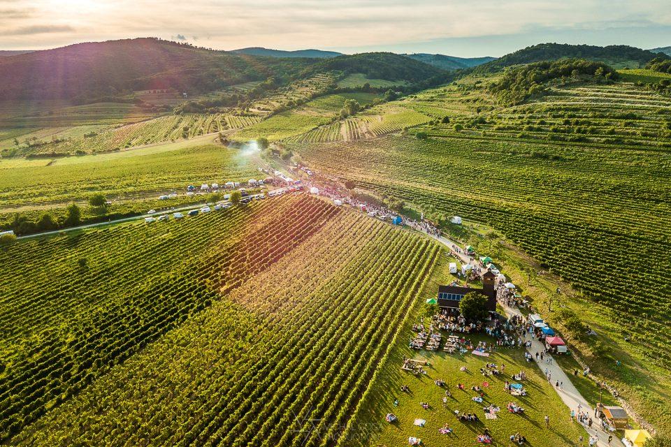 festival Víno pod hviezdami Pezinok
